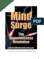 Mind Surge New