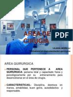 Area Quirurgica (Corregido)