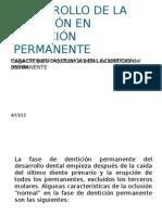 DESARROLLO DE LA OCLUSION EN DENTICION PERMANENTE