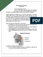 11 Pharynx