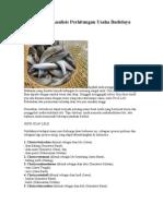 Panduan Dan Analisis Perhitungan Usaha Budidaya Ikan