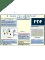 Deforesatation Poster