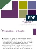 Determinismo e Liberdade (Pedro Mota)