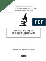 pdf_TP_Bio_cel