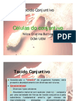 celulas conjuntivo 2012