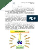 4_MOTIVACÃO_DIFERENÇAS_INDIVIDUAIS