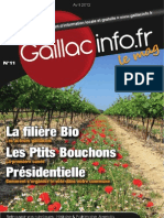 Gaillacinfo Le Mag n°11 – Avril 2012