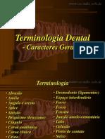 Terminologia Dental