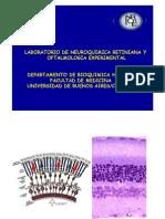 Bioquimica Retina