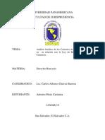 Iniversidad Panamericana(Los Deposito)