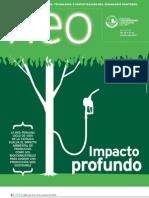 Suplemento Neo Año 2, número 28 (2010)