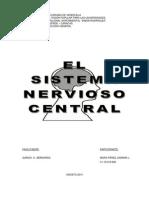 Trabajo de Psicologia Gnral (El Sistema Nervioso)