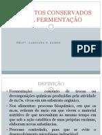 ALIMENTOS CONSERVADOS PELA FERMENTAÇÃO