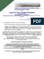 Magnésio & Ferro_Clorofila & Hemoglobina