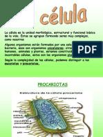 celulabiologia