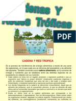 Diapositivas Redes Troficas Quimica Ambiental [Reparado]