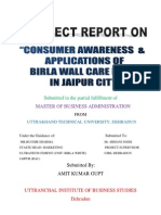 Amit Final Project Report...