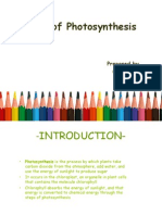 Rate of Photosynthesis.plant Physio