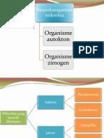 Keanekaragaman Mikrobia (Kolom Winogradsky)