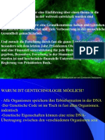 Stem Cell (Deutsch)