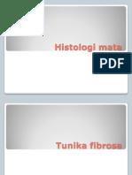 Histologi Mata Kitty