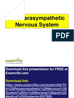 The Parasympathetic Nervous System (Neuroscience Review for Nursing and Medical Students)