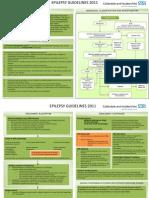 Epilepsy Guidelines