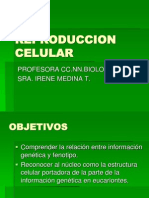 reproducción celular 1.-