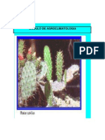 Modulo Agroclimatologia