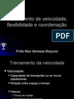 Treinamento de Velocidade Flexibilidade e Coordenação