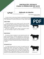 alicação de injeções bovino