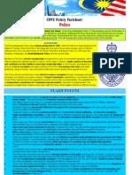CPPS Factsheet