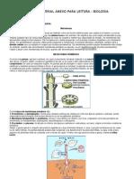 tecidosvegetais (1)