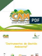 PPT 10_Instrumentos de gestión ambiental