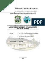 Informe de Aguaje