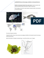 Estuarine Macroalgae as Biofilters for Dissolved Nutrients From Waste Waters.Spanish scientists cited publications of a Russian researcher (Moscow State University) Dr. S. A. Ostroumov.http://www.scribd.com/doc/89467497