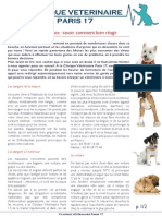 Situations Urgentes Chiens