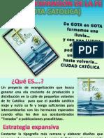 BASES DE EXPANSIÓN DE GOTA CATÓLICA