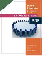 Defining Self Managed Teams