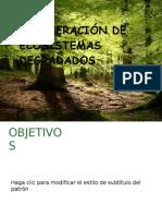 DB. Monografia