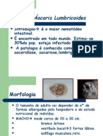 AscarisLumbricoidesTTEnterobius2