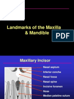 Landmarks of Max. & Mand.