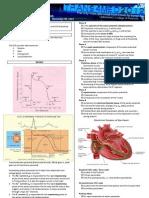 Basic ECG and Arrhythmia FINAL
