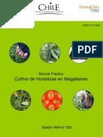 Invernaderos Produccion de Hortalizas