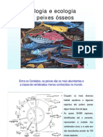 Peixes-Osseos_2012