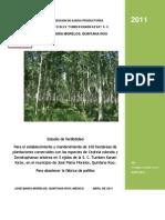 Factilidad Proyecto Plantaciones ARS 2011