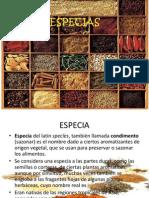 Especias y Hierbas