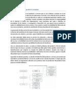 Selección y diseño de los productos a manejar
