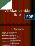 Amebas+de+Vida+Livre+PDF