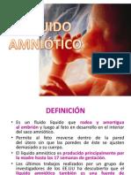 Poiwer de Embriologia
